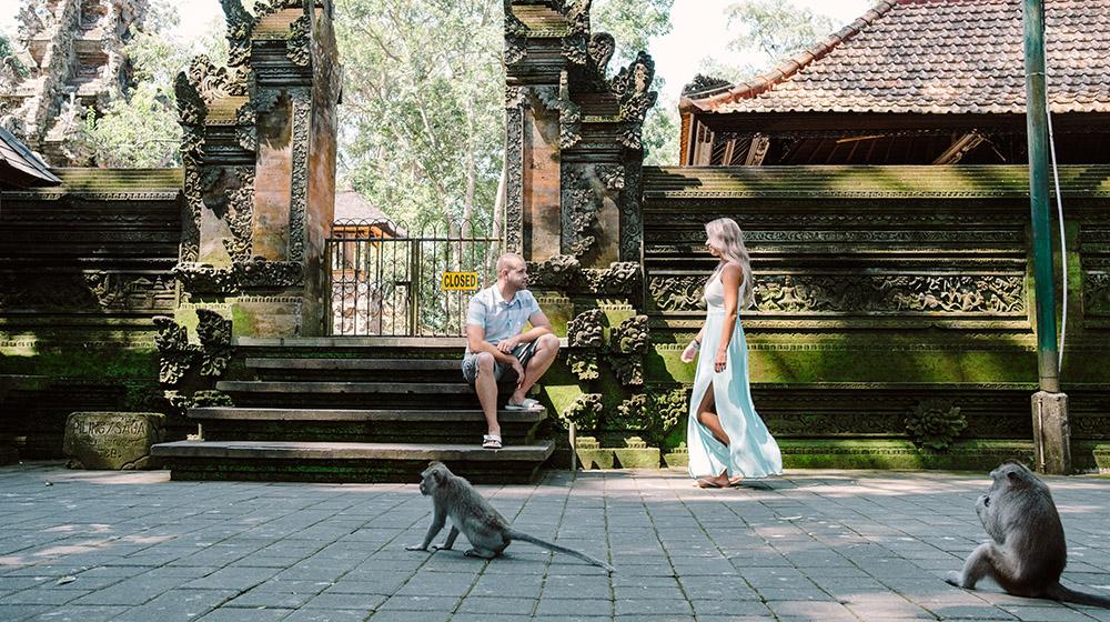 bali honeymoon photo at monkey forest