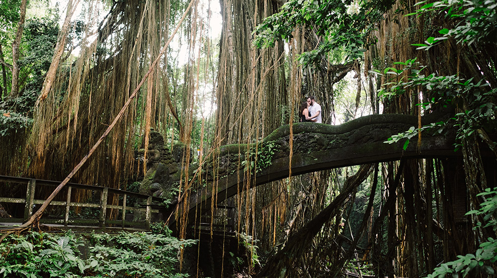 bali honeymoon photography in monkey forest