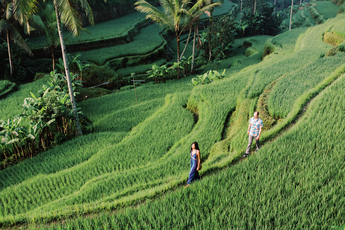 Tegalalang Rice Terraces Photography